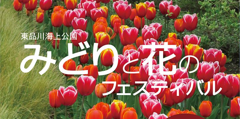 >イベント23みどりと花のフェス